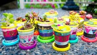 Mini Plant Pots - an Easy Upcycle Craft for Kids