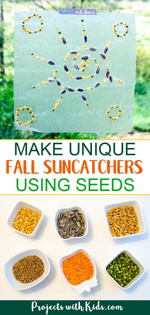 Make unique fall suncatchers using seeds! This easy fine motor craft will have kids of all ages engaged and having fun. Looks beautiful taped up on a window! #projectswithkids #fallcrafts #craftsforkids #suncatchers