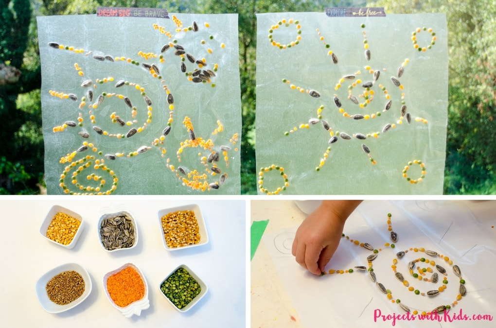 Make unique fall suncatchers using seeds! Give this low cost activity a try that will have kids of all ages engaged for a long time. Looks beautiful taped up on a window!
