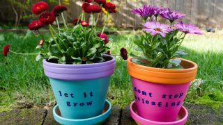 Easy DIY Painted Flower Pots for Kids to Make