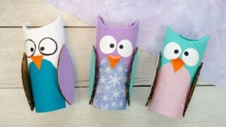 Adorable Toilet Paper Roll Owl Craft